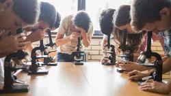 Publication de T. Breda et M. Hillion dans Science : les biais de genre dans le recrutement des enseignants
